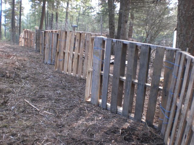 How To Build A Pallet Fence Gena S Gems